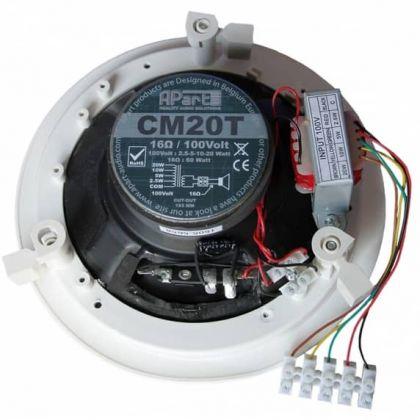Apart Audio CM20T